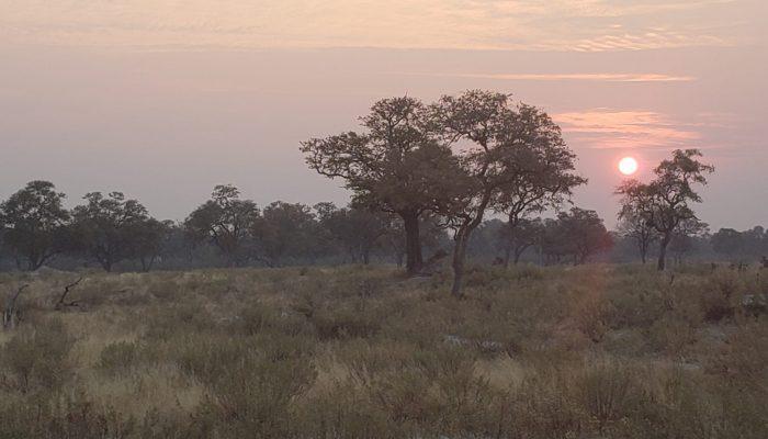 2018 Africa 07